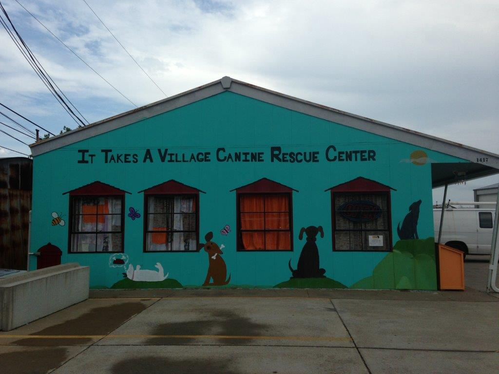 It Takes a Village Rescue Center